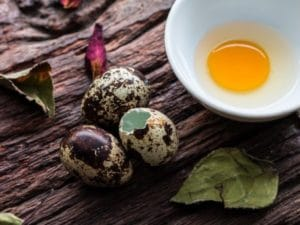 яйцо перепелки