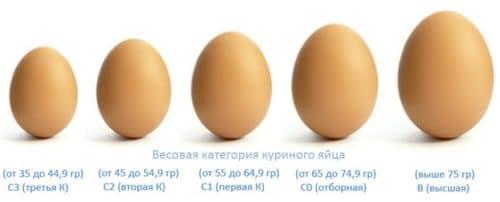 вес куриного яйца по типам