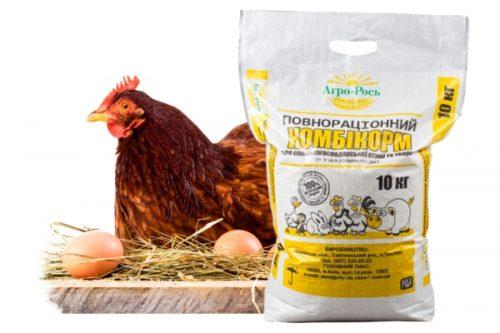 Как подобрать комбикорм для кур несушек, цыплят и бройлеров